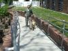 Vakvezető kutyák világnapja 2009.