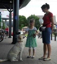Ismét családi napok a Tesco Áruházban