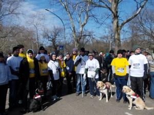 Jótékonysági futás a III. Rotary Futófesztiválon