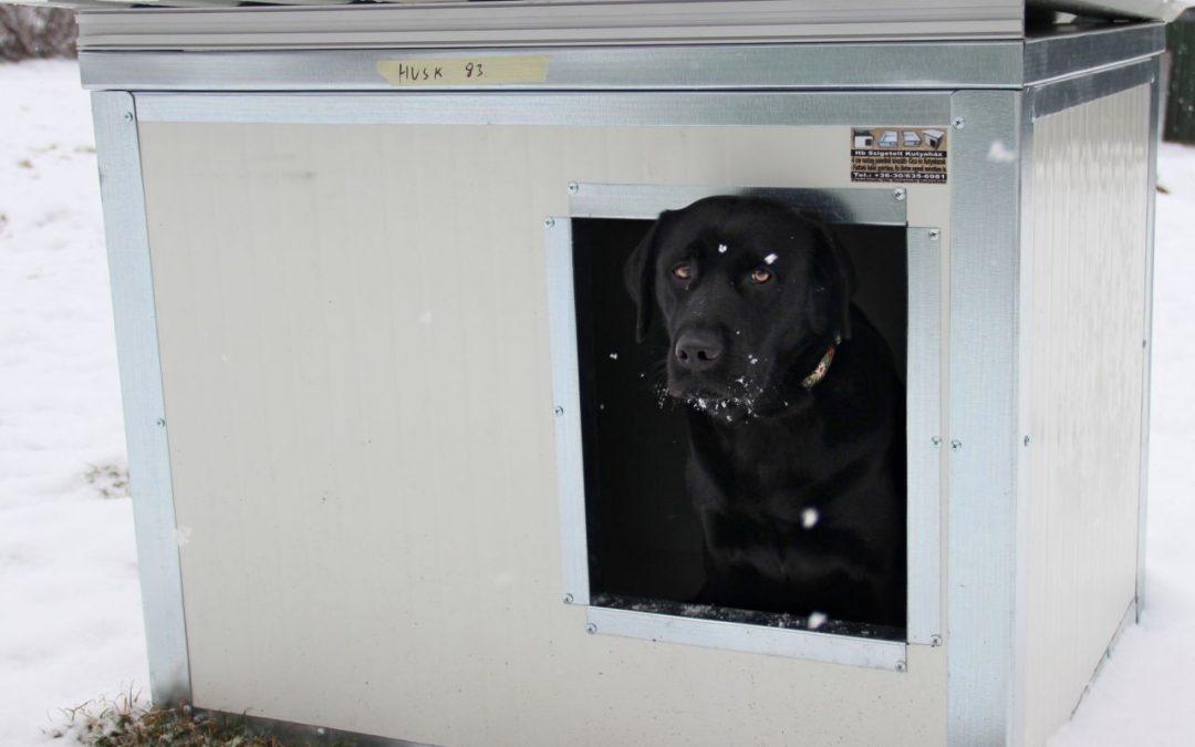 Adományokból új kutyaházak