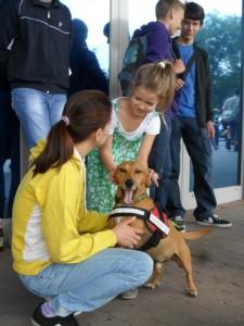 Tesco családi napok – avagy Columbo kutya rendel :)