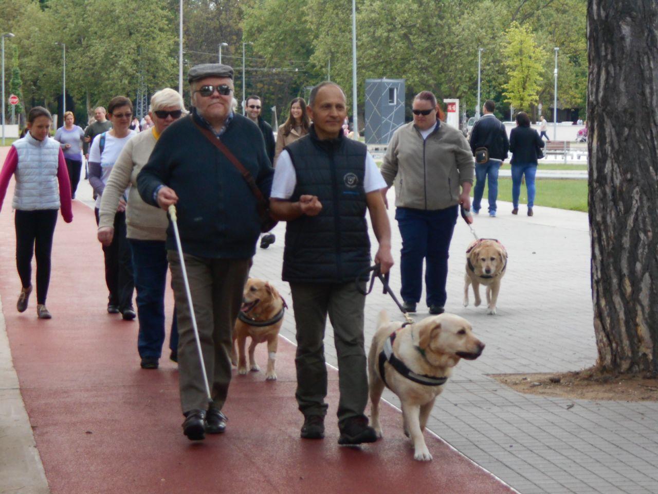 Így ünnepeltük a Vakvezető Kutyák Világnapját