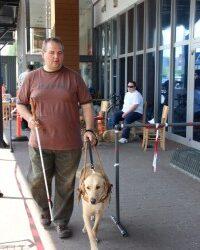 Vakvezető kutyák világnapja