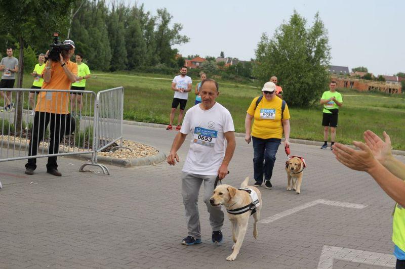Vakvezető kutyák a Decathlon Családi Futáson